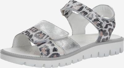 PRIMIGI Sandále 'AXEL' - sivá / čierna, Produkt