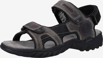 Sandales de randonnée Dockers by Gerli en gris