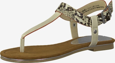 MARCO TOZZI T-bar sandals in Beige / Grey, Item view