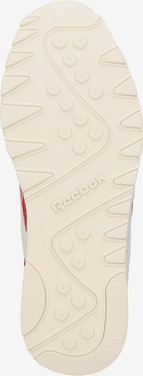 Sportbačiai be auliuko 'CL NYLON' iš Reebok Classic , spalva - balkšva: Vaizdas iš apačios
