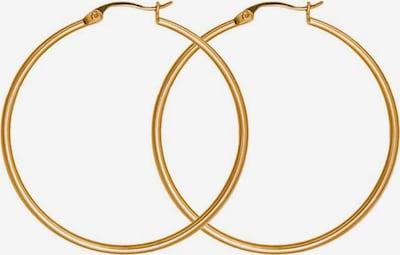 XENOX Creole 'Classic, X1961G, X1962G, X1963G, X1964G' in gold, Produktansicht