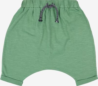 Sense Organics Shorts 'MAGESH' in grün, Produktansicht