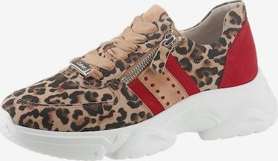 GABOR Sneaker in kastanienbraun / hellbraun / feuerrot, Produktansicht