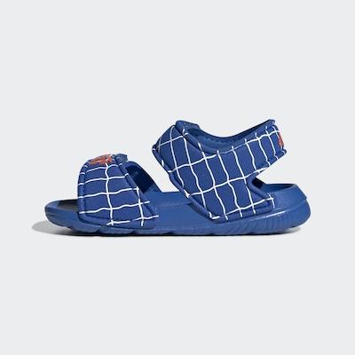 ADIDAS PERFORMANCE Sandale 'AltaSwim' in blau / neonorange / weiß, Produktansicht