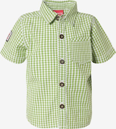 BONDI Kurzarmhemd in grün, Produktansicht