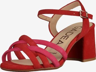 GADEA Sandalen in dunkelpink / rot, Produktansicht