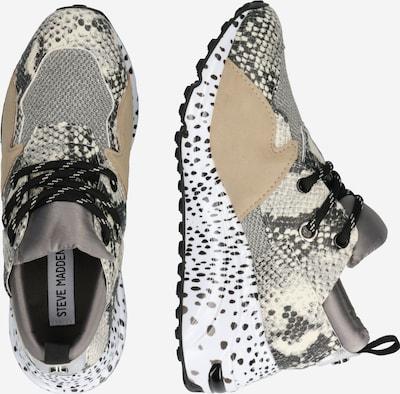 STEVE MADDEN Sneaker in beige: Seitenansicht