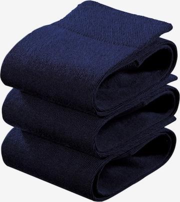 ROGO Strümpfe in Blau