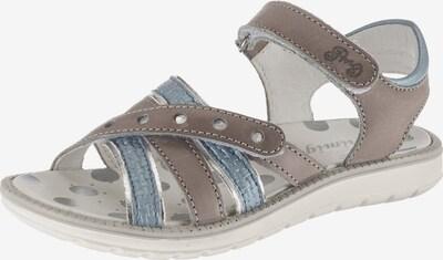 PRIMIGI Sandale in taubenblau / taupe, Produktansicht