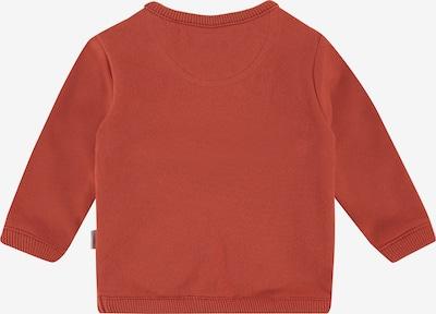 Noppies Sweater 'Archbald' in beige / navy / dunkelorange: Frontalansicht