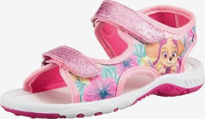 PAW Patrol Sandale in mischfarben / rosa / hellpink, Produktansicht