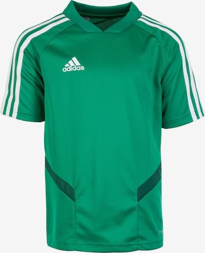 ADIDAS PERFORMANCE Funktionsshirt 'Tiro 19' in grün, Produktansicht