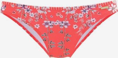 SUNSEEKER Bikini-Hose 'Ditsy' in mischfarben / orangerot: Frontalansicht