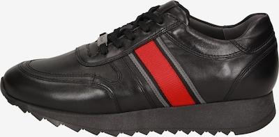SIOUX Sneaker 'Oseka' in hellrot / schwarz, Produktansicht