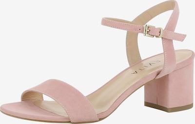 EVITA Sandalen met riem 'Mariella' in de kleur Rosa, Productweergave