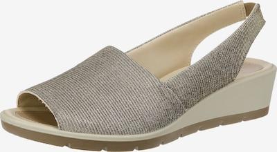 SALAMANDER Sandaletten 'Gela' in grau / naturweiß, Produktansicht