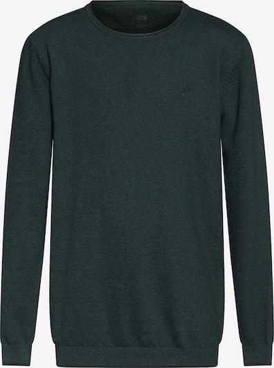 WE Fashion Pullover in grün, Produktansicht