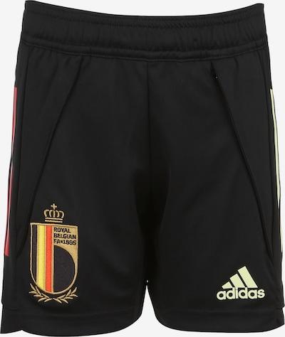 ADIDAS PERFORMANCE Trainingsshort 'EM 2020 RBFA Belgien' in schwarz, Produktansicht