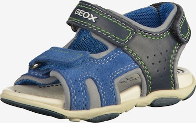 GEOX Sandale in blau / nachtblau / hellgrün, Produktansicht