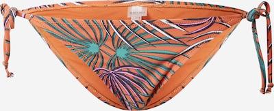 Slip costum de baie 'Tiger' Shiwi pe culori mixte / portocaliu închis, Vizualizare produs