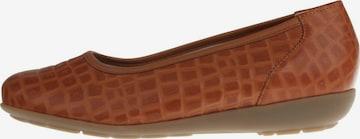 Natural Feet Ballet Flats 'Catharina' in Brown