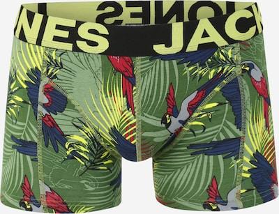 Boxer trumpikės 'ANIMALS' iš JACK & JONES , spalva - alyvuogių spalva / mišrios spalvos, Prekių apžvalga
