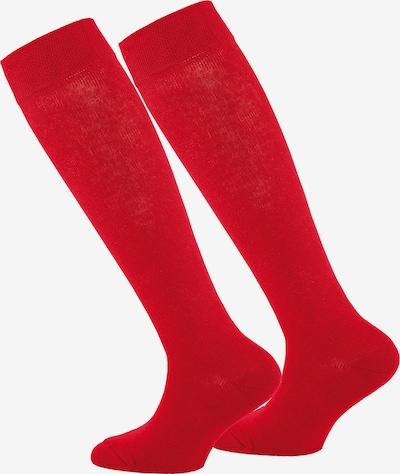 EWERS Kniestrümpfe in rot, Produktansicht