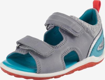 ECCO Sandalen 'Biom' in hellblau / grau / orangerot, Produktansicht