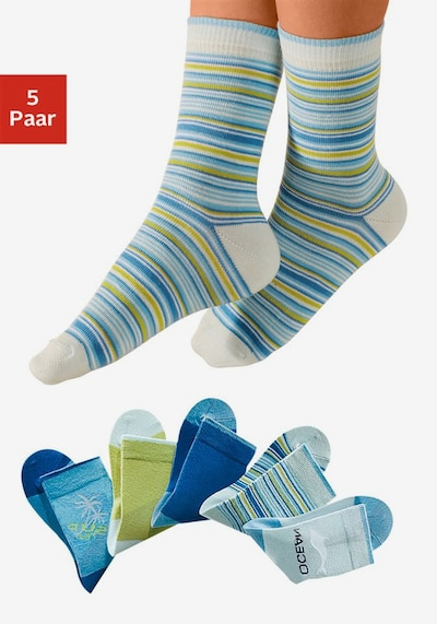 HIS JEANS Socken (5 Paar) in türkis / kiwi / weiß: Frontalansicht