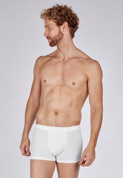 HUBER Trunk in weiß, Modelansicht