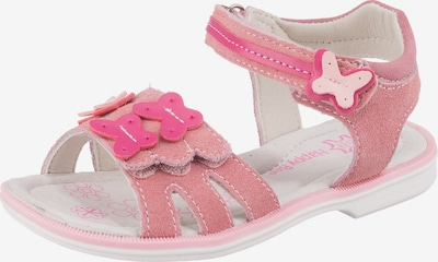 Happy Bee Sandalen in pink, Produktansicht