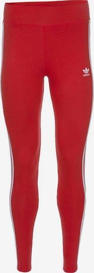 ADIDAS ORIGINALS Hose in rot / weiß, Produktansicht