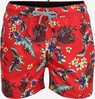 Superdry Zwemshorts 'Beach Volley' in de kleur Gemengde kleuren / Rood, Productweergave