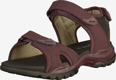 GEOX Sandalen in rotviolett, Produktansicht