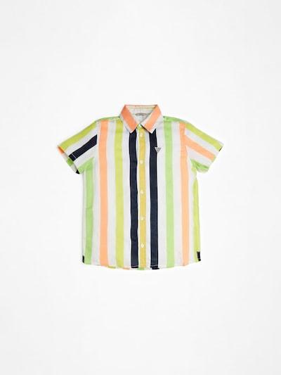 GUESS KIDS Hemd in gelb / grün / rosa, Produktansicht