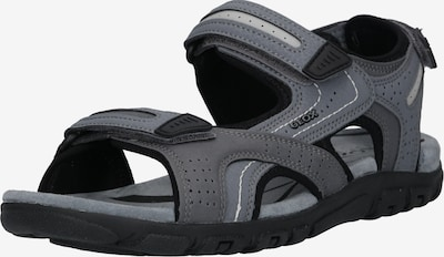 GEOX Sandale 'Uomo Strada' in anthrazit / schwarz, Produktansicht