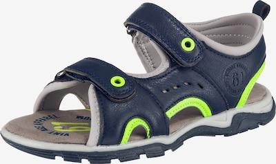Sprox Sandale in dunkelblau / hellgrau / neongrün, Produktansicht