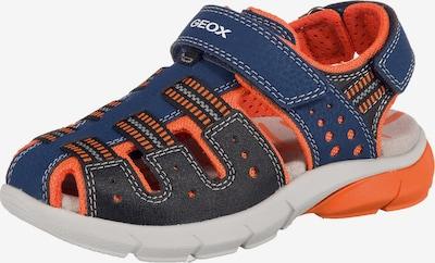 GEOX Sandalen 'Flexyper' in blau / kobaltblau / orange, Produktansicht