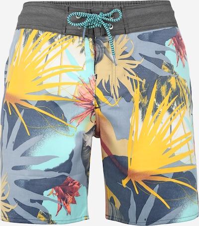 Pantaloni de baie 'LIFTON' PROTEST pe albastru / galben, Vizualizare produs