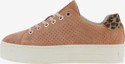 BULLBOXER Sneaker in braun / hellbraun, Produktansicht