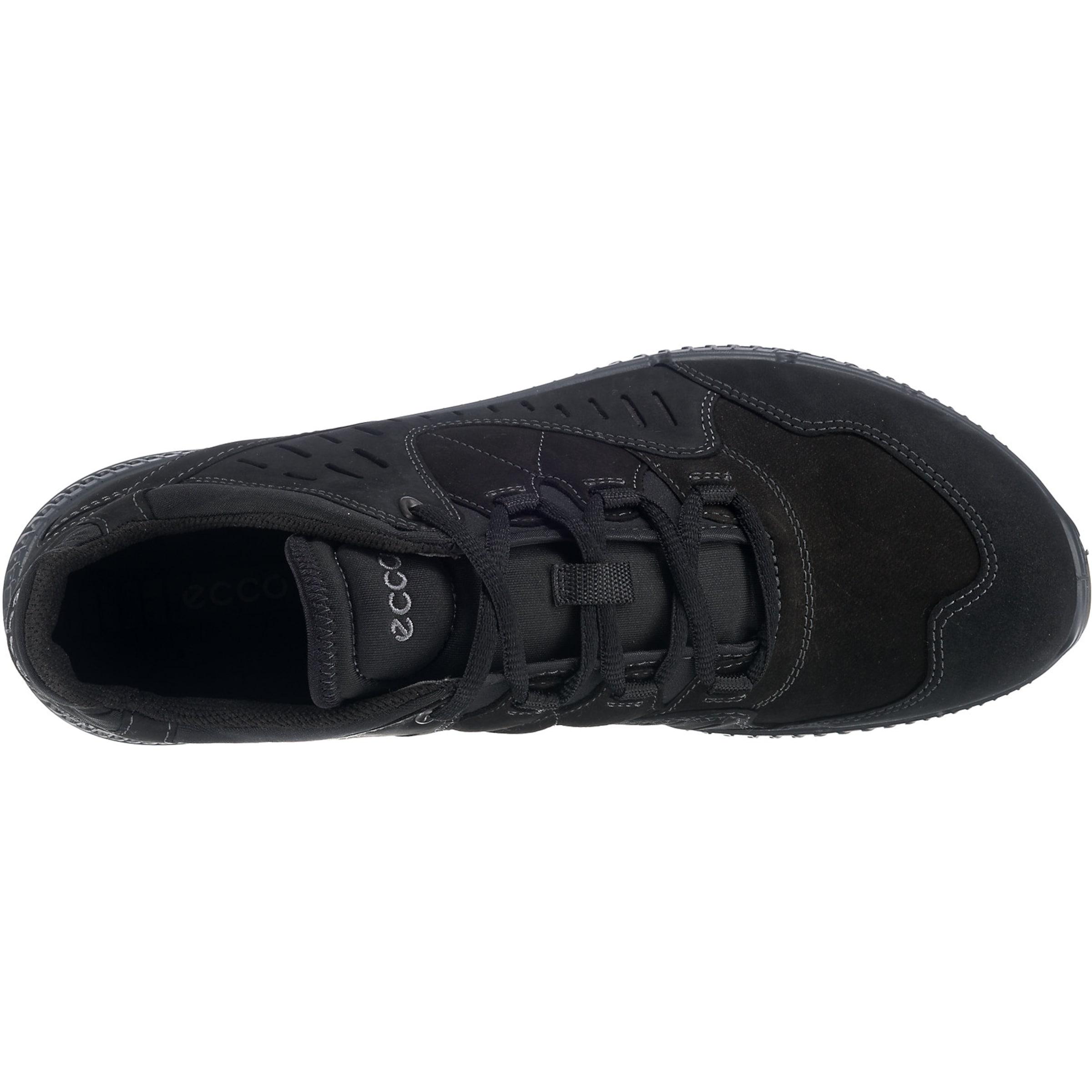 In Ecco Schwarz Sneaker Ecco Sneaker 'terrawalk' wPnX0k8O