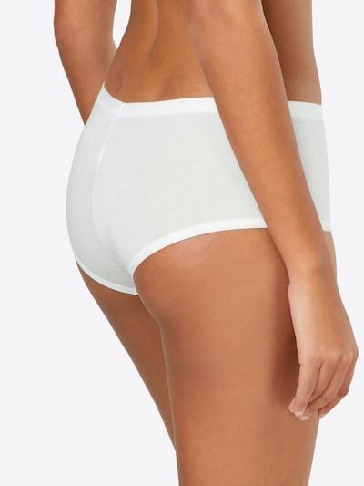 SCHIESSER Slip 'Shorts' in weiß: Rückansicht