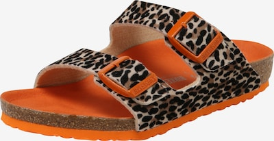 BIRKENSTOCK Schuhe 'Arizona' in braun / orange, Produktansicht