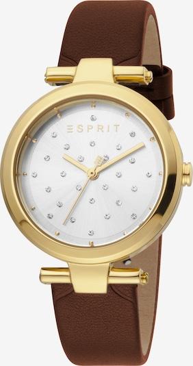 ESPRIT Montre à affichage analogique en or, Vue avec produit