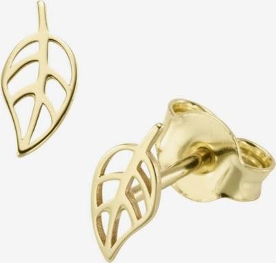 FIRETTI Ohrstecker 'Blätter' in gold: Frontalansicht