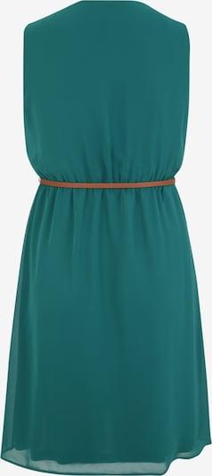 Rochie 'Elena' ABOUT YOU Curvy pe verde: Privire spate