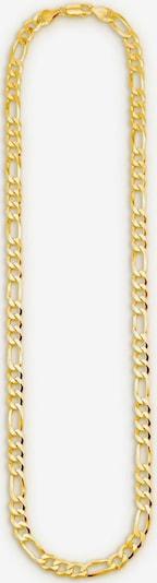 BRUNO BANANI Bruno Banani Gliederkette 'B0038N/S0/00/1/60' in gold, Produktansicht