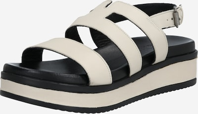 SHABBIES AMSTERDAM Sandalen met riem in de kleur Offwhite: Vooraanzicht