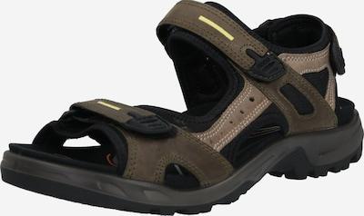 ECCO Sandale in greige / schwarz, Produktansicht