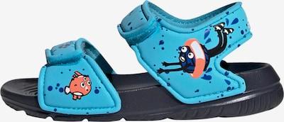 ADIDAS PERFORMANCE Strand-/badschoen in de kleur Turquoise / Gemengde kleuren, Productweergave